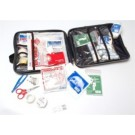 DOMESTIC MOTORIST FIRST AID KIT