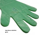LONG ARM GREEN GLOVE (BOX OF 100)